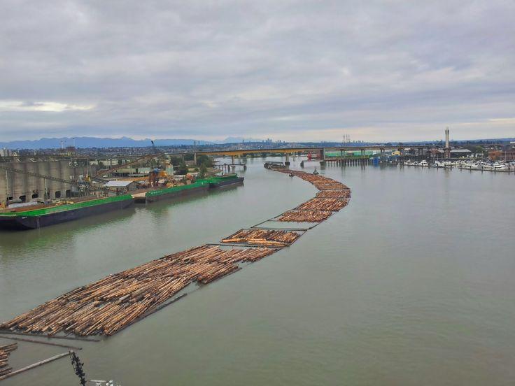 Britská Kolumbie je celá ze dřeva a plná dřeva. Tak mi někdo vysvětlete, proč je tu dřevo mnohem dražší, než u nás?