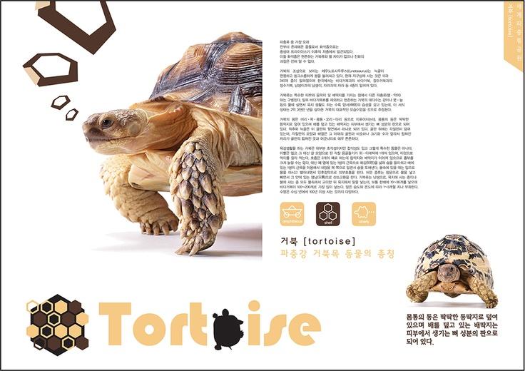 세계파충류공원 프로모션 팜플렛