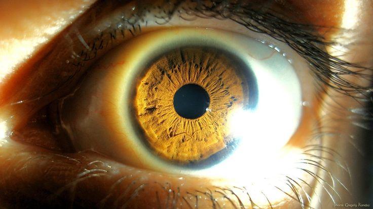 Iris Eye Hd hd  close ...