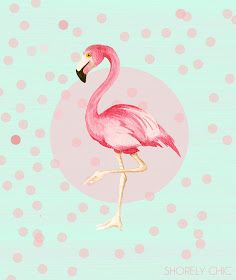 "Found my ""pink flamingo kind of love"""