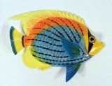 Handpainted Tropical Fish Replica Wall Mount Decor Plaque Blue Yellow Top 8