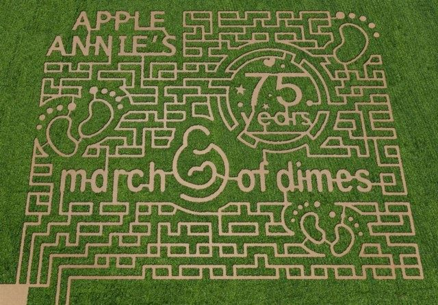 Split into three levels of difficulty, these Willcox, Arizona maze-makers give you an interactive passport  to help find your way out (in the event your inner compass misleads you).  Figure out how much your ticket will cost here »