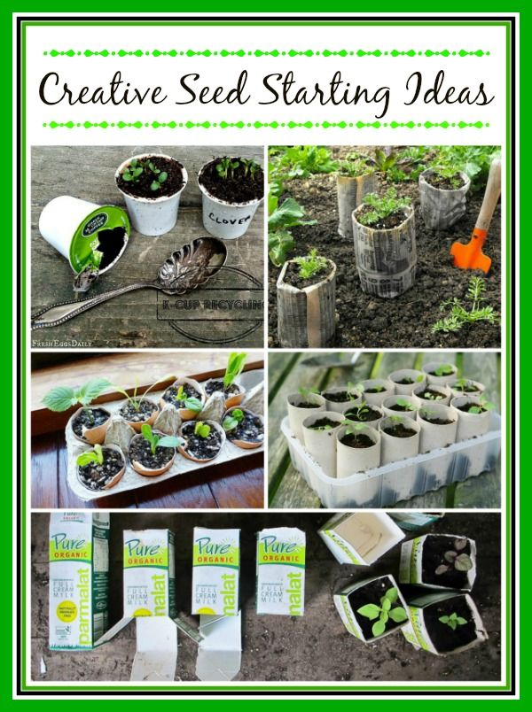It's time to start seeds! Here are some creative seed starting ideas that will save you money.