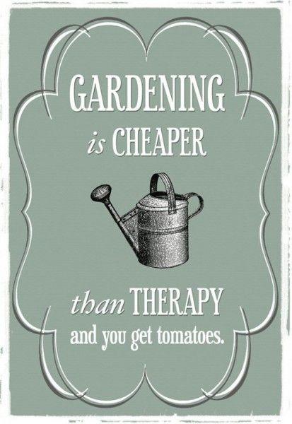 Funny Gardening Memes plus Friday Frivolity Linky Party - Munofore