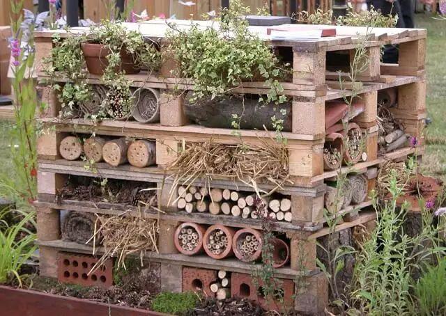 Pallets die samen een woonplaats vormen voor insecten en kleine dieren als vogels en egels