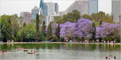 Bosque de Chapultepec es el parque más grande de la Ciudad de México. Hay nueve museos, parques de diversiones y lagos y fuentes. Hay muchas cosas que hacer en este parque hermoso.