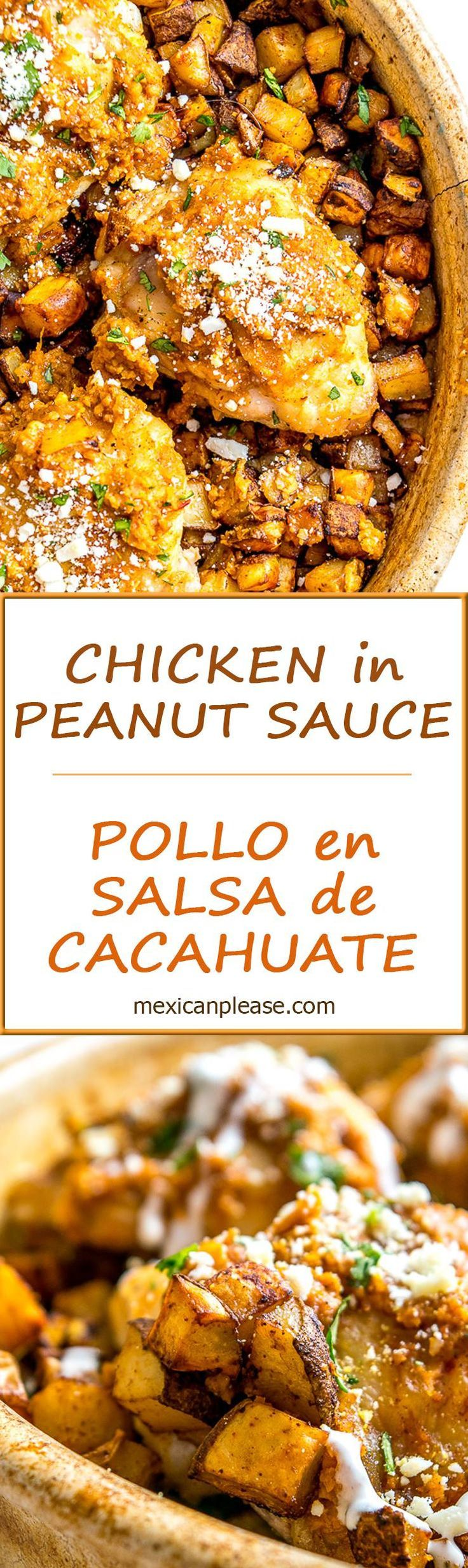 Chicken in Peanut Sauce --combine fresh roasted peanuts, a tomato chipotle base, a dash of cinnamon, and you've got a rustic delight you can't find anywhere else in the world.   So good!  http://mexicanplease.com