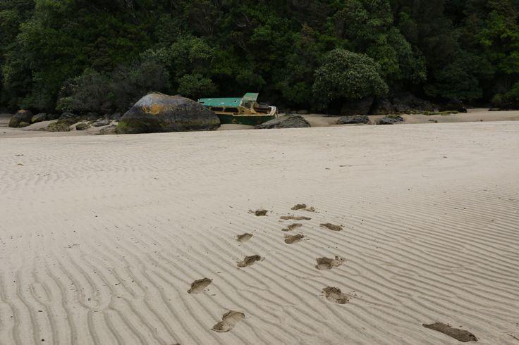 Deserted Beach Stewart, Island New Zealand.