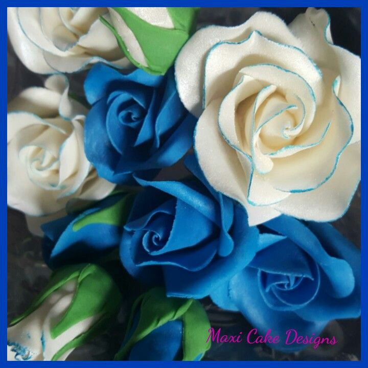 Royal blue and blue edged white roses hand made.www.facebook.com/MaxiCakeDesigns