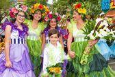 Фестиваль цветов на острове Мадейра, Португалия — стоковое фото