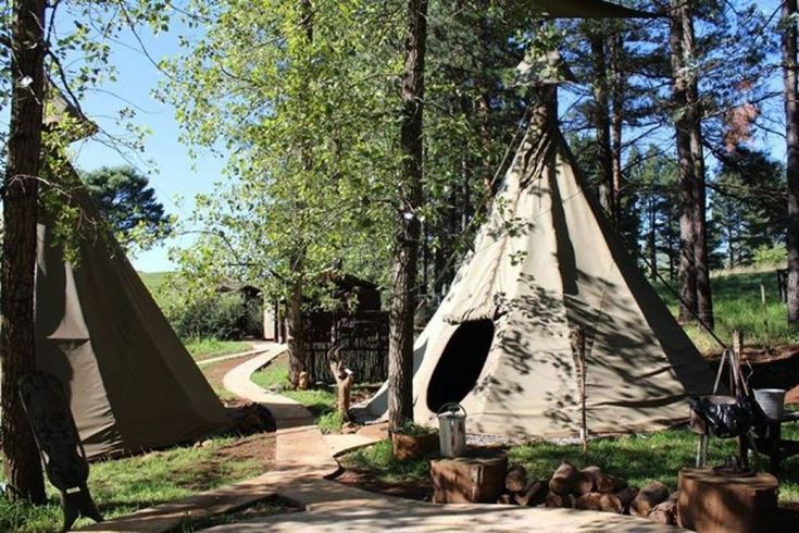 Little Wing Teepee Camp accommodation near Underberg & Southern Drakensberg, Kwazulu Natal. Set under a glade of pine trees and staring over the rolling grasslands of the Southern Berg, Little Wing Teepee Camp certainly is a getaway with a difference.