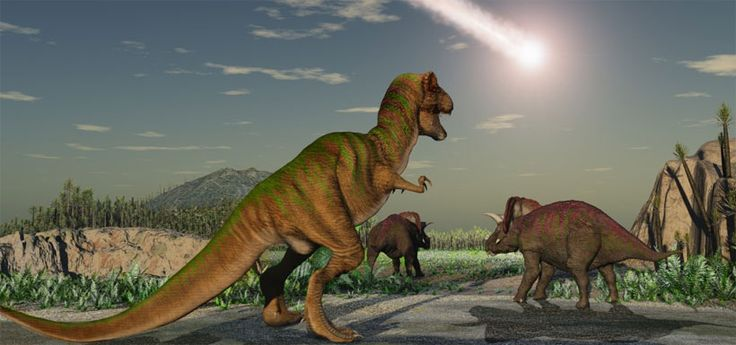 Los 30 segundos que marcaron la diferencia entre la vida y la muerte de los dinosaurios
