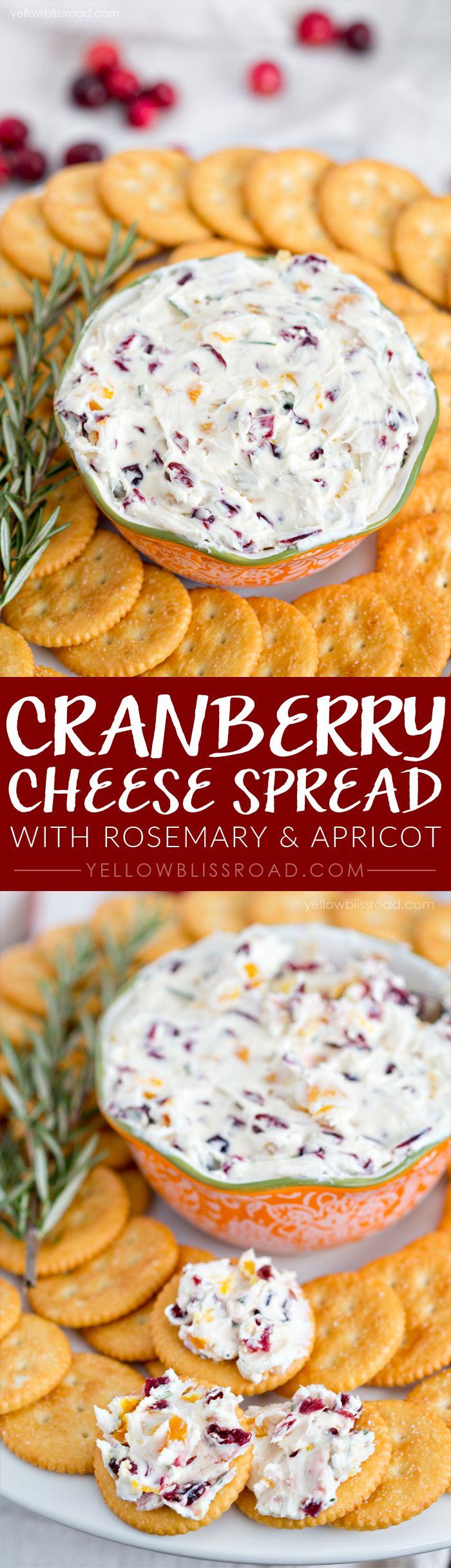 Holiday Cheese Spread recipe with dried cranberries & apricots, rosemary, and goat and cream cheeses - spread it on crackers or toasted bread