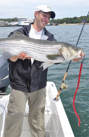 34 best images about inshore fishing on pinterest fly for Striper fishing rigs