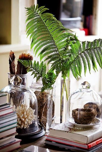 Never underestimate the impact of a vase of over sized foliage.   Fresh, simple, unexpected,   and you can probably find something sim...