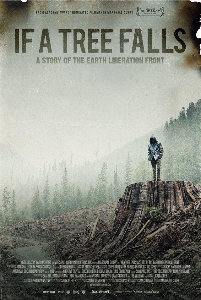 if a tree falls (documentary): environmental science, social studies