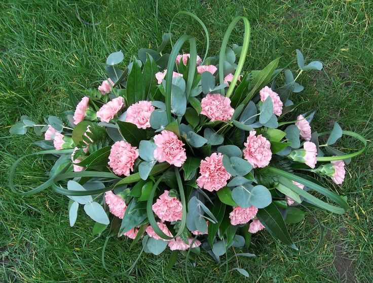 Baby pink carnation spray