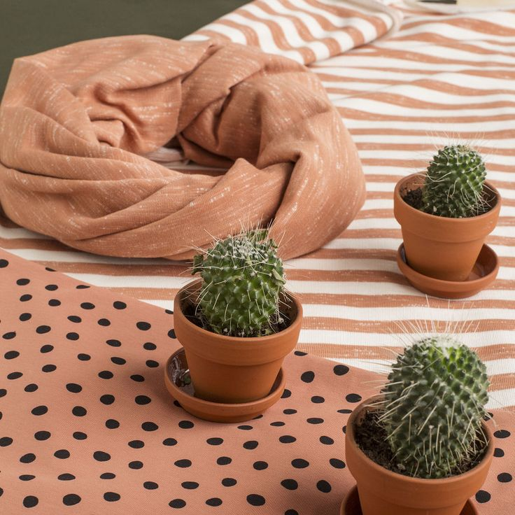 Pippuricollege, fasaani (LEVEÄ) | NOSH verkkokauppa  | Get inspired by new NOSH fabrics for Spring 2017! Discover new colors, prints and quality organic cotton. Shop new fabrics at en.nosh.fi