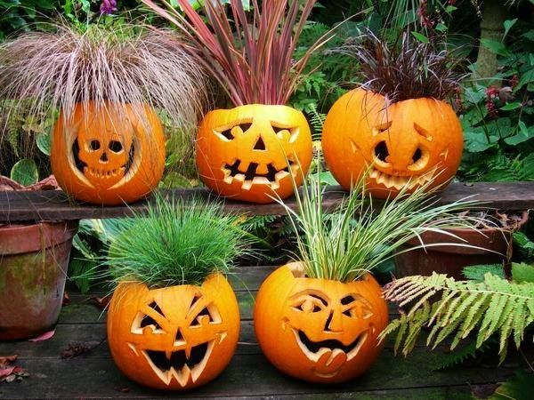 Best halloween planters images on pinterest