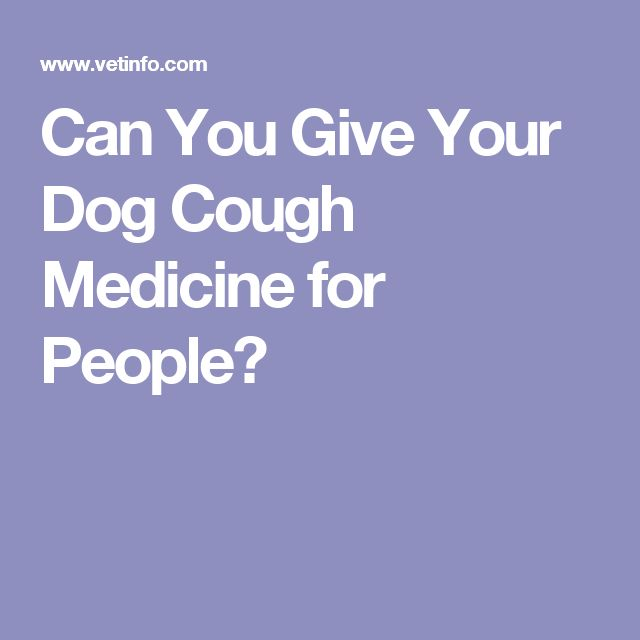 Can You Give Dogs Baby Cough Medicine