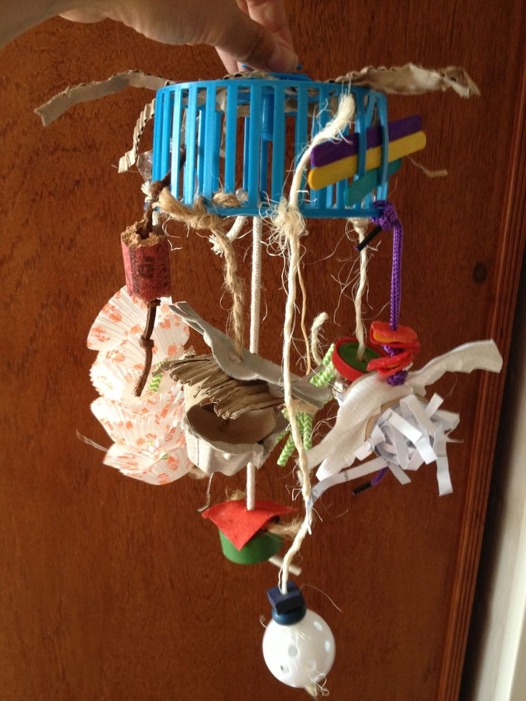 87 Best Free Amp Diy Bird Toys Images On Pinterest