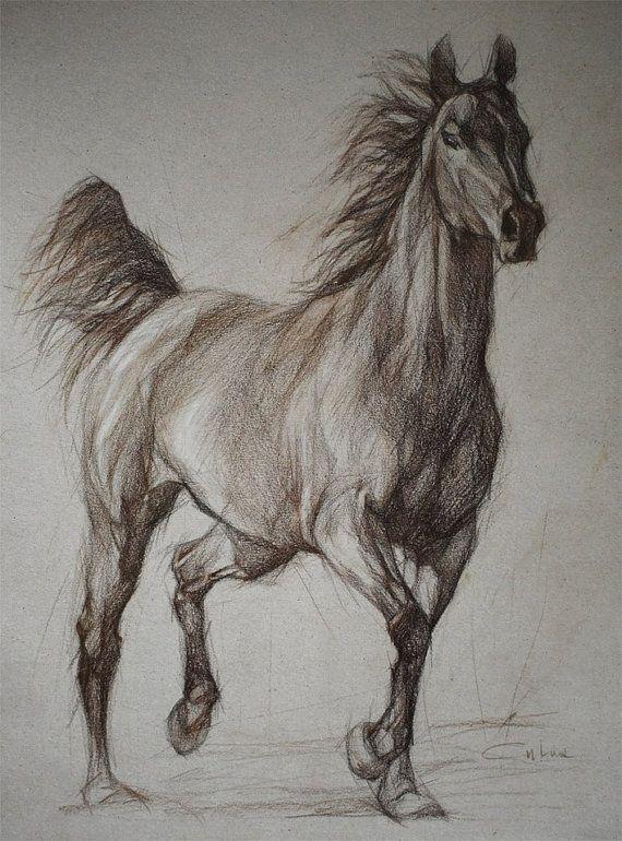 Wild Horse full silhouette  Equestrian Art by PETARTPortraits, $120.00