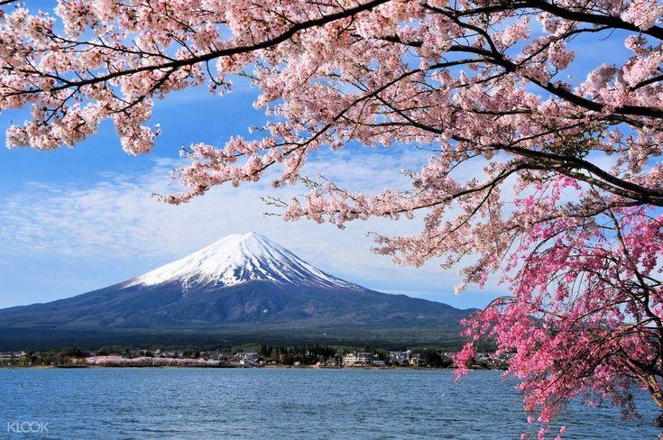 Mt. Fuji, Lake Suwa, and Takayama One Way Day Trip from Tokyo