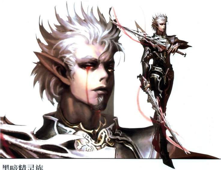 74 best images about Lineage 2 on Pinterest | Knight ...