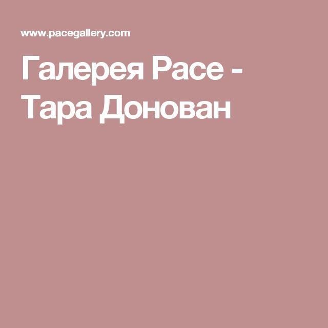 Галерея Pace - Тара Донован
