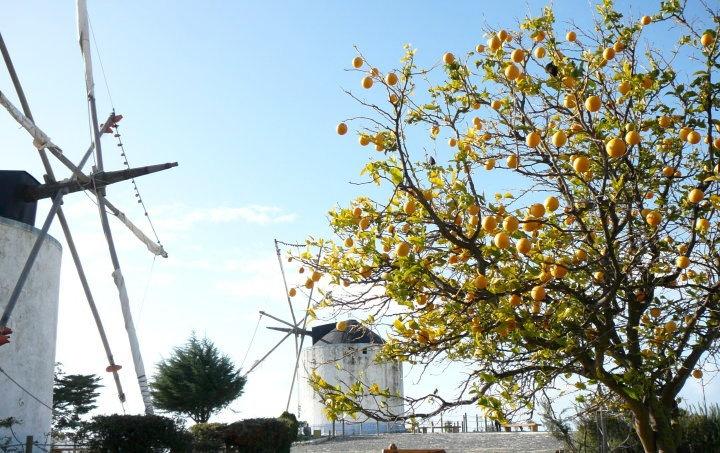 Moinhos do Restelo, #Lisboa