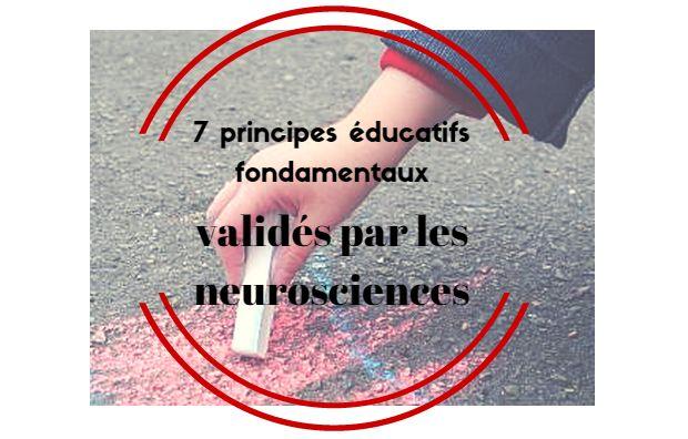 7 principes éducatifs fondamentaux validés par les neurosciences cognitives, affectives et sociales. Pour libérer les vrais potentiels de l'être humain