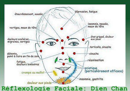 La réflexologie faciale ou Dien-Chan : Le visage centralise toutes les zones réflexes du corps et se trouve être le miroir expressif des douleurs - Blog de l'Ecole du Troisième Oeil
