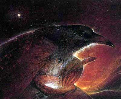 Raven Makes Magic » alias Bringer of Light - 1994 by Susan Seddon Boulet