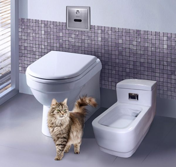 Автоматический туалет для кошек Kopfgescheit