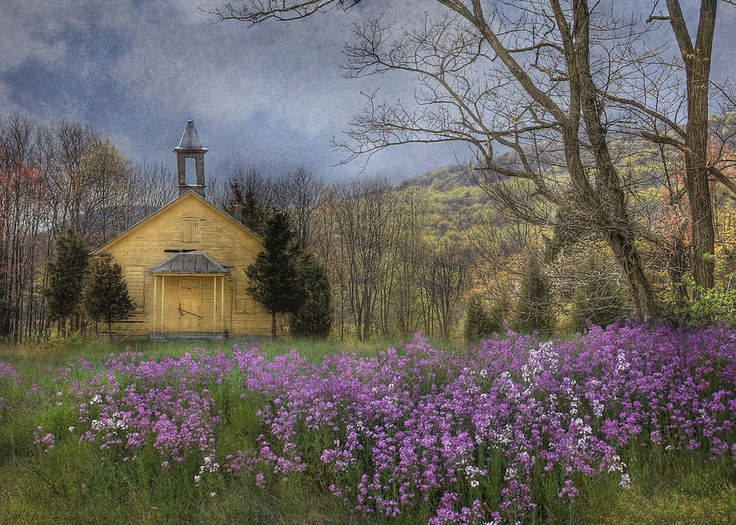 Country Charm School | Church, Wild flowers and Old churches