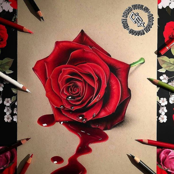 WANT A SHOUTOUT ?   CLICK LINK IN MY PROFILE !!!    Tag  #DRKYSELA   Repost from @adbettley   BLEEDING ROSE  Bleeding rose finished. Roughly 20 hours work and lots of red! Original is for sale DM me if interested....PRINTS are on sale now (LINK IN BIO) with worldwide shipping also available!  Prismacolour pencils on strathmore toned tan paper. #drawing #rose #redrose #draw #photooftheday #picoftheday #drawingoftheday #cre8hype #sketch #prismacolor #tonedtan #new #like4like #tagsforlikes…