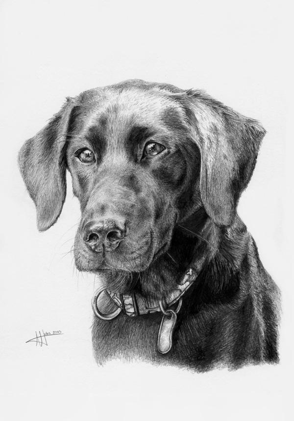 Les 382 meilleures images du tableau psy rysunek o wkiem - Dessin de psy ...