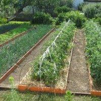 Как красиво оформить огород: рекомендации, идеи и фото