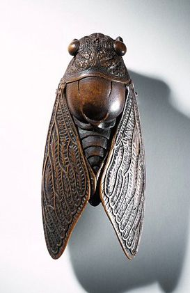Carved wood netsuke in the form of a cicada, late 19th century, Japan. V Museum