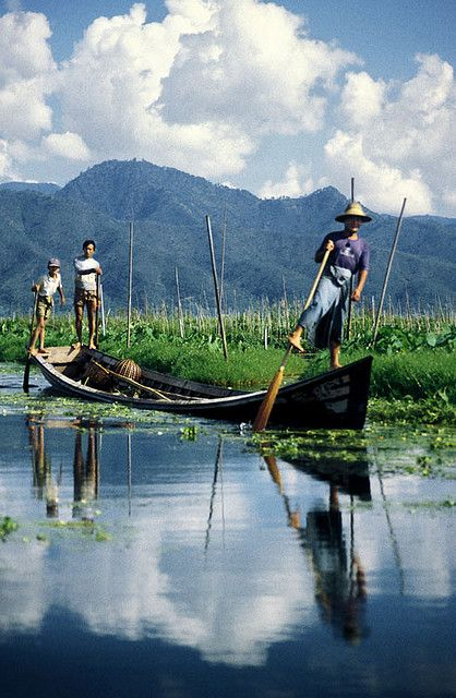 Myanmar Fisherman Leg-Rowers and Floating Vegetable Gardens in Inlay Lake, Southern Shan State, Burma/Myanmar
