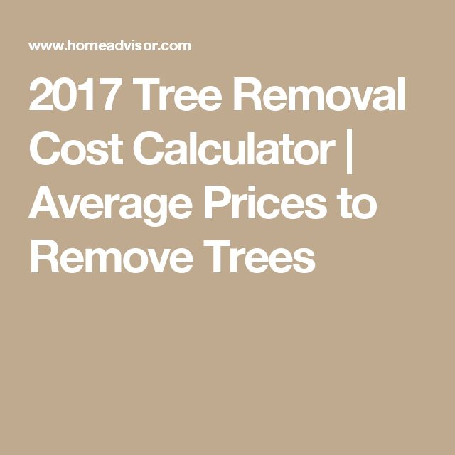 2017 Tree Removal Cost Calculator | Average Prices to Remove Trees