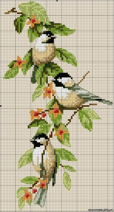 Cross Stitch 'Birds'.