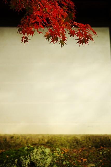 白塀 Kyoto, Japan
