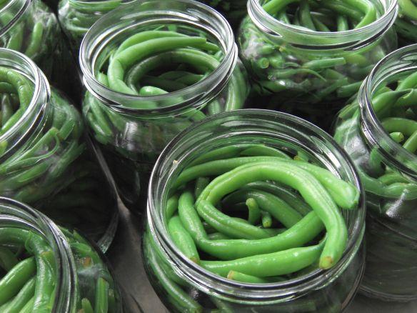 krisna kertje: zöldbab befőzés