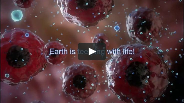 """This one inspires me every time!  This is a new high definition (HD) dramatic video choreographed to powerful music that introduces the viewer/student to the Science of Biology. It is designed as a motivational """"trailer"""" to be shown by teachers in Biology and Physical Science classrooms in middle school, high school and college as a visual Introduction to the wonders of life."""