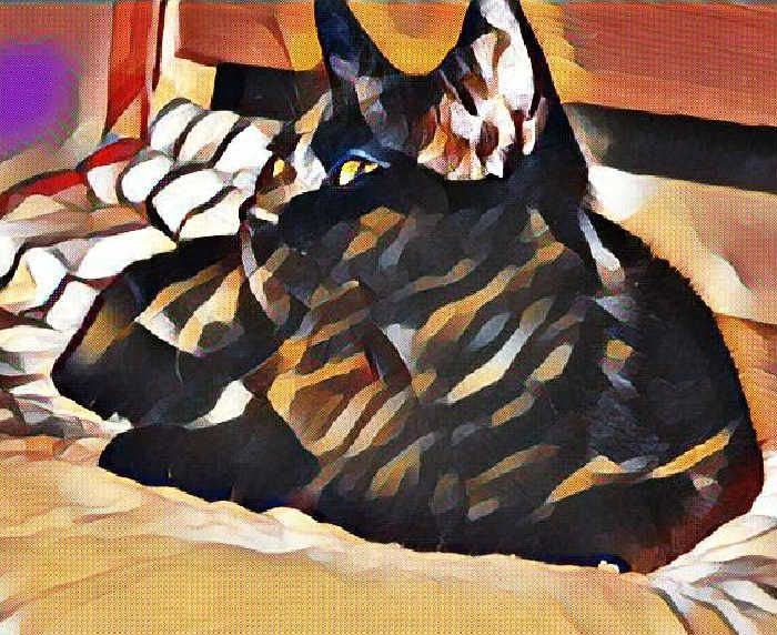 Check out this project - cat art for your wall - from CreatePhotoCalendars.com!