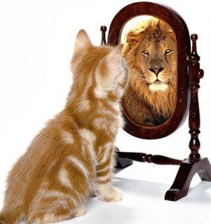 La tua vita è difficile? Ti spiego tutti i segreti per ritrovare la fiducia in te stesso ed aumentare la tuaautostima