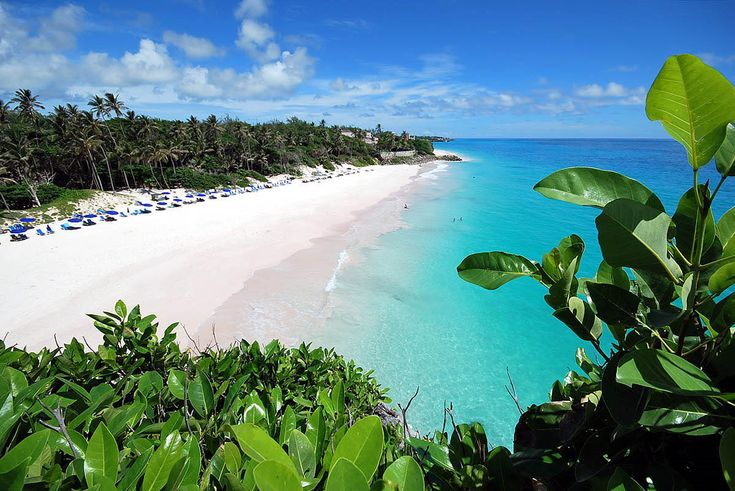 Crane Beach, in St Philip Parish, is considered amongst the very best in the world!  Although it is over-looked by The Crane Resort, _all_ beaches in Barbados are public, and anyone / everyone can enjoy the sand, the sea, and the incredible view!! =])