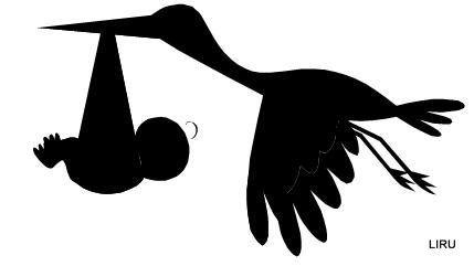 silhouettes -  Picasa Web Albums