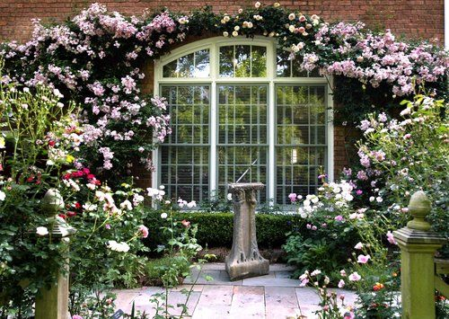 Image result for anna davis rose garden